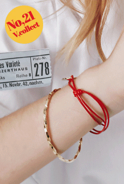 [V,Collect] No,21 Thin Twisted Bangle