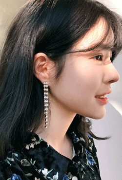 Studded Drop Earrings