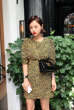 Puff Sleeve Animal Print Dress