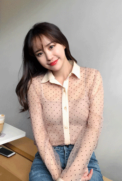 Sheer Dotted Blouse