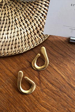 Chunky Hook Push Back Earrings